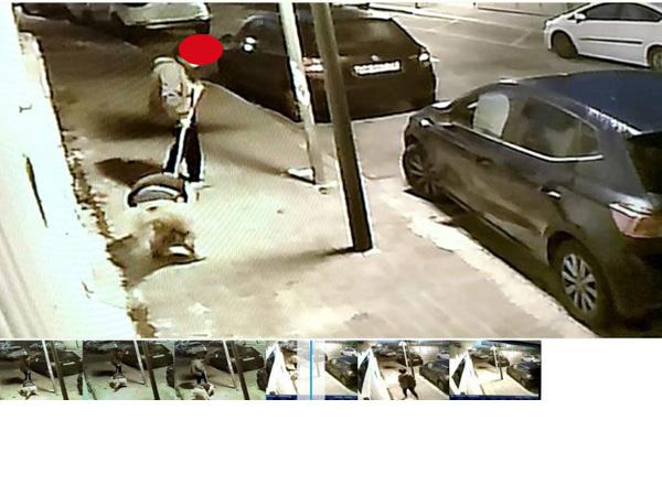 אכיפת איסוף צואת כלבים ביוקנעם